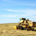 Mietitrebbiatrice lavorando un campo di grano a Portogallo — Foto Stock