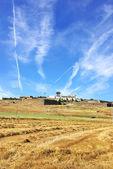 Paisagem de estremoz, região do alentejo, portugal. — Foto Stock