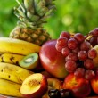 Seasonal varied tropical fruit basket — Foto de Stock