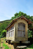 Espigueiros - old and typical warehouse to store maize and spike — Stock Photo