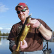 Golden walleye on a lake — Stock Photo