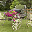Vintage horse buggy - Stock Photo