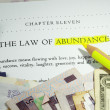Law of abundance — Foto Stock