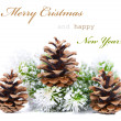 Christmas greeting card with cones - 图库照片