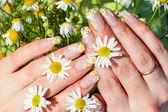 Nail art design — Stock Photo
