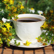 Herbal  tea - Stock Photo
