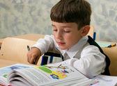 Schoolboy reading — Stock Photo