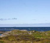 прибрежный пейзаж — Стоковое фото