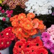 Variety of colourful bouquets of flowers - Stock Photo