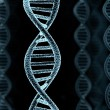 DNA spiral model - Stock Photo