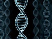 DNA spiral model — Stock Photo