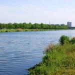 Small dutch channel near Helmond — Stock Photo #5631981