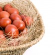 Eggs basket — Foto Stock