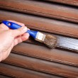 Painting woodwork — Stockfoto