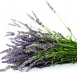 Lavender — Stock Photo #5773754