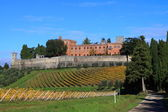 Siena (Siena) — Stockfoto