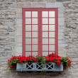 Old Window — Stock Photo #6206853