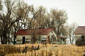 Abandoned Farm Buildings — Stock Photo