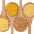 Mustard Selection — Stock Photo #6220621