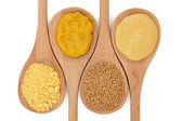 Mustard Selection — Stock Photo