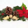 Christmas Decoration — Stock Photo #6231951