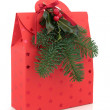 Christmas Gift Bag — Stock Photo