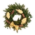 Christmas Wreath — Stock Photo #6249929