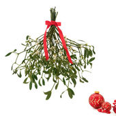 Mistletoe — Stock Photo
