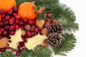 Christmas Fruit, Nuts and Fauna — Stockfoto