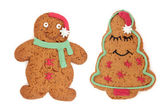 Gingerbread Biscuit — Stock Photo