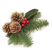 Christmas Decorative Spray — Stock Photo