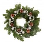 Christmas Wreath — Stock Photo #6259502