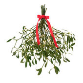 Mistletoe Magic — Stock Photo