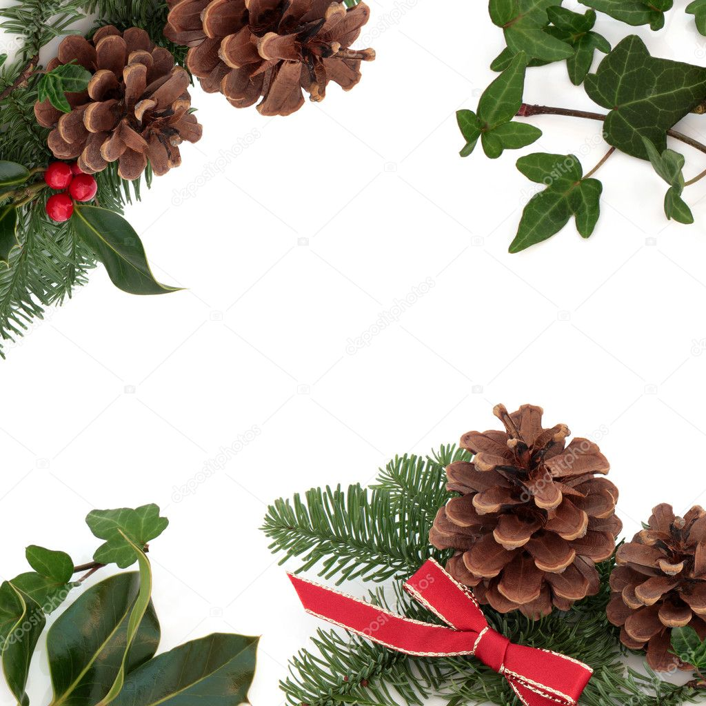 Christmas decorative border of holly, ivy, mistletoe, pine cones and spruce fir leaf sprig with red ribbon isolated over white background. — Stock Photo #6257647