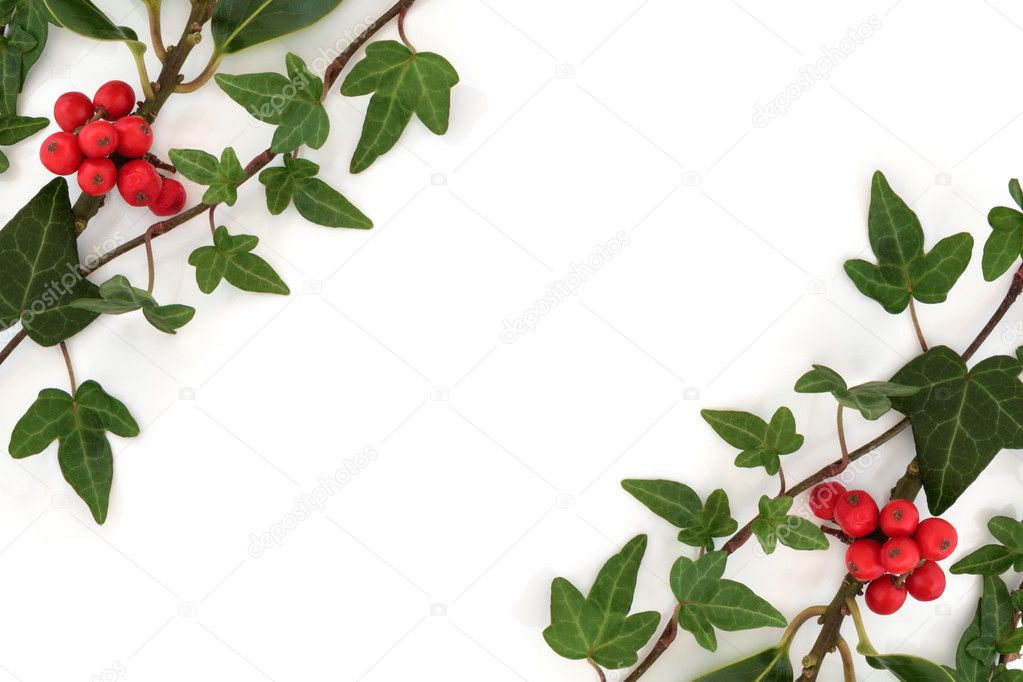 Holly and ivy abstract border stock photo c marilyna 6257686 for Holly and ivy border