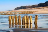 Costa del mar báltico — Foto de Stock