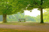 Park bench — Foto Stock