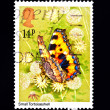 Small tortoiseshell butterfly postage stamp — Stock Photo