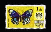 与它蝴蝶邮票 — 图库照片