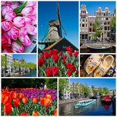 Holland collage — Stock Photo