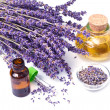 Stock Photo: Lavender oil
