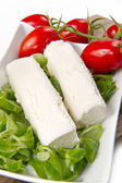 Goat cheese — Stock Photo
