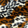 Stock Photo: Tiger background