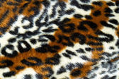Tiger background — Stock Photo