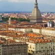 A view of Turin — Stock Photo #6497779
