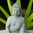 Buddha — Stock Photo #6518149