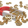 Magnet and golden dollars — Stock Photo