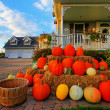Bunch of pumpkins — Stock Photo #5960072