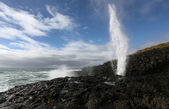 Blowhole in action — Stock Photo