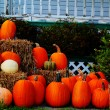 Royalty-Free Stock Photo: Bunch of pumpkins